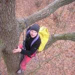 Grimpe d'arbres, accrobranche - forêts d'Île-de-France