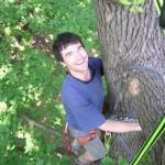 Grimpe d'arbres, accrobranche - forêts autour de Paris